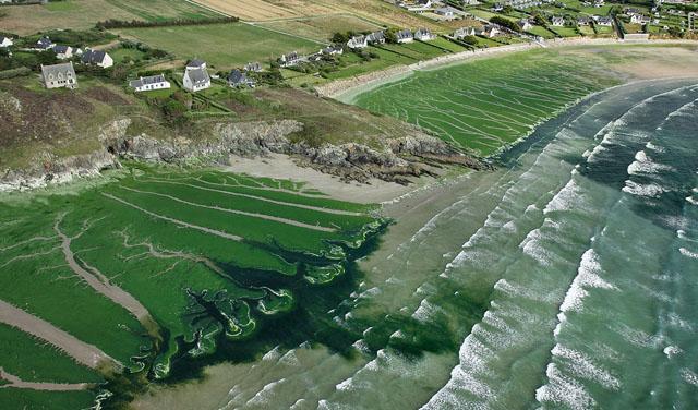 Les nitrates et les algues vertes en Bretagne
