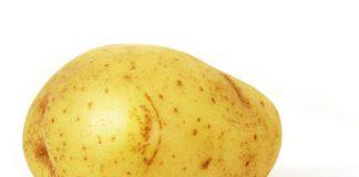 pomme de terre légume