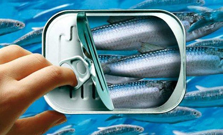 boite sardines