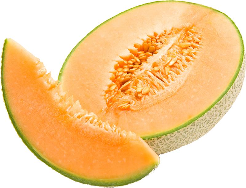melon qualité
