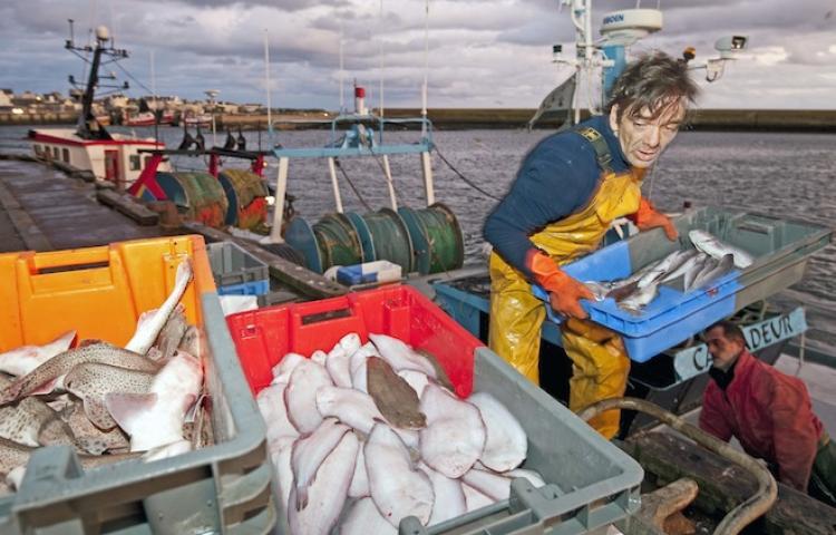pêcheurs quotas
