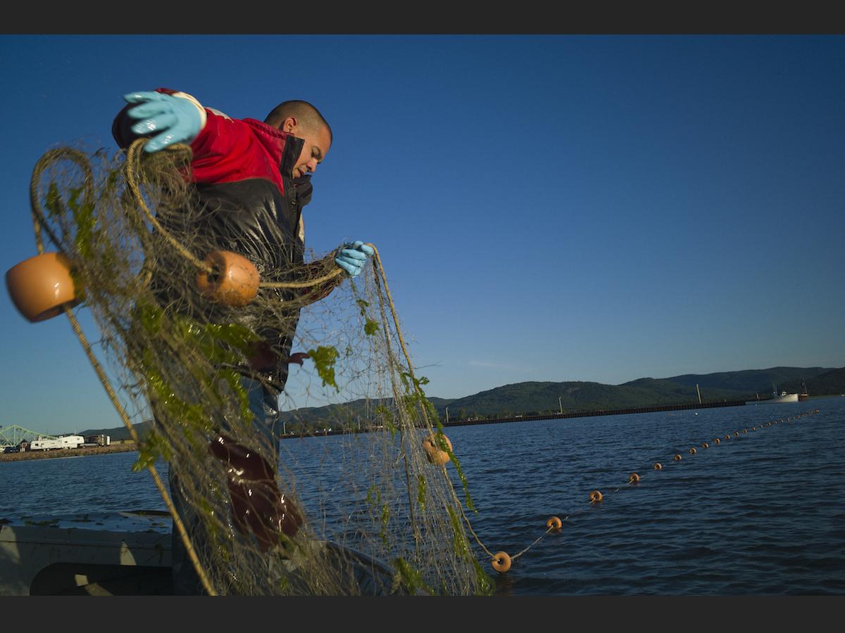 pêche au Nord morue