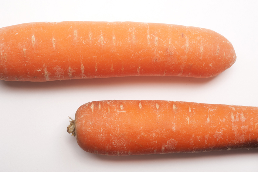 carotte alimentation cuisine