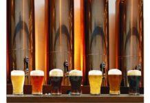 brasserie biere artisanale
