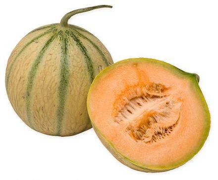 Charentais Cantaloup
