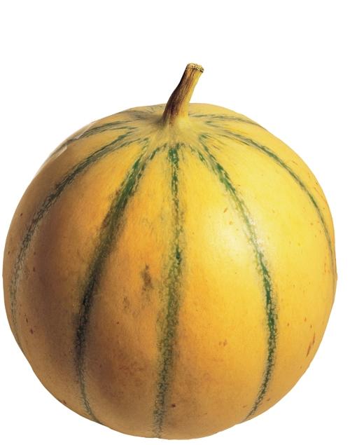 melon De Bellegarde
