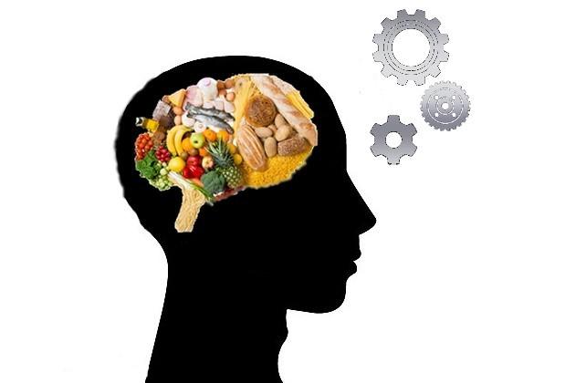 cerveau poids