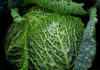 prix bio légume