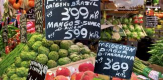fruits legume prix