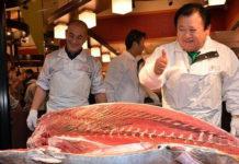 thon rouge Pacifique