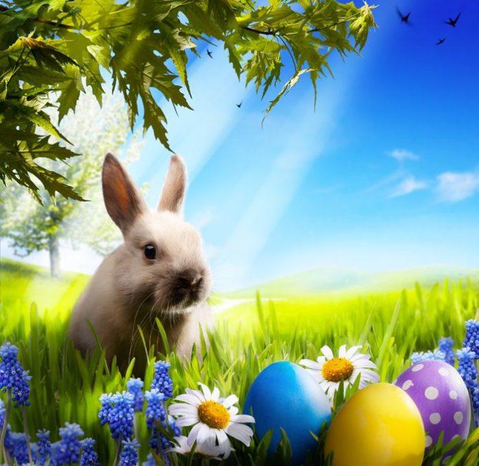 oeufs de Pâques fête