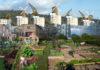 cultures agricoles villes