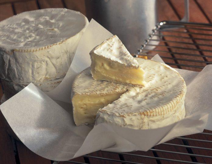 camembert lait cru