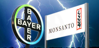 Bayer fusion Monsanto