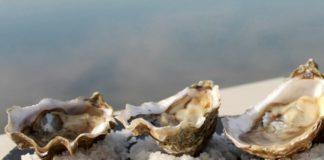 huitres mer