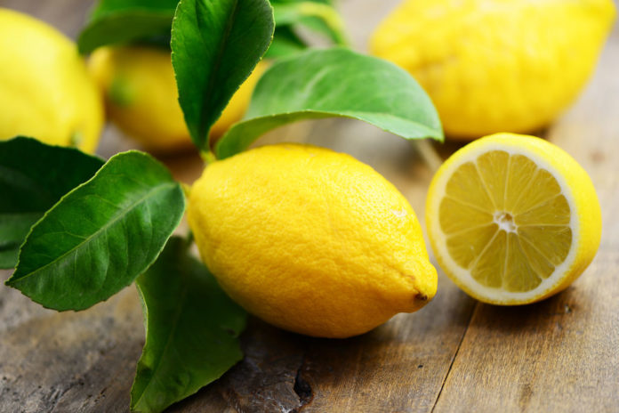 citron digestion