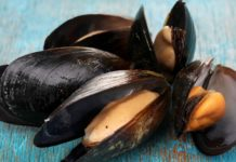 moules toxines