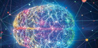 cerveau lipides dopamine