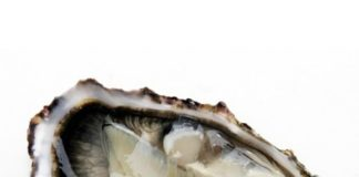 huitre apport en zinc