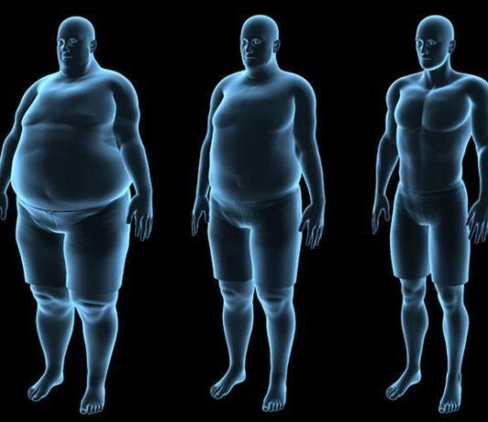 microbiote obésité
