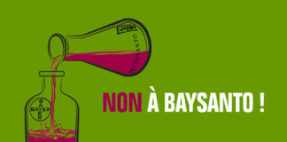 Round-up glyphosate Bayer