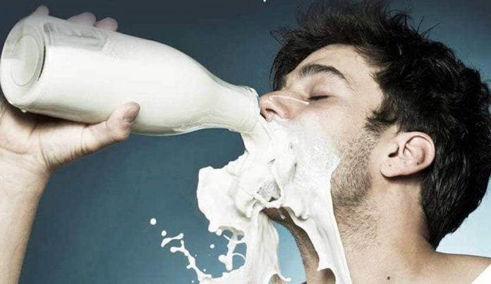 lait consommation lait