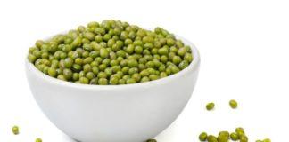 haricots mungo proteines