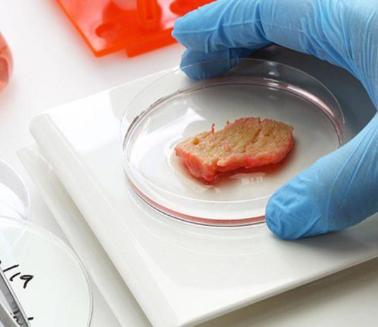 viande artificielle