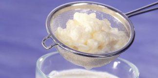 kefir aliments fermentes